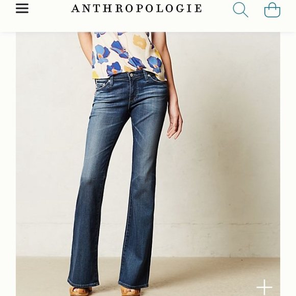 AG Angelina petite bootcut (Anthropologie)